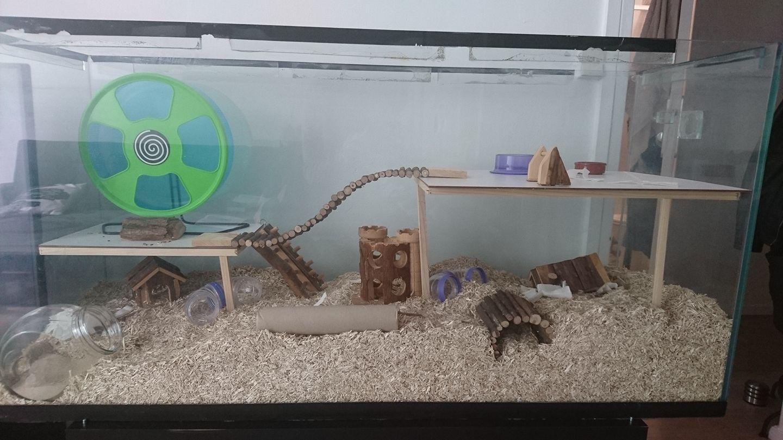 habitat hamster 39 op dia. Black Bedroom Furniture Sets. Home Design Ideas