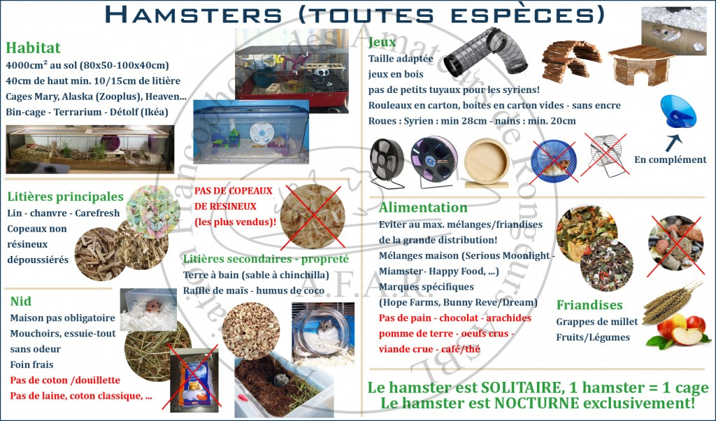 panneau_hamster copy copy