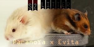 s2litter